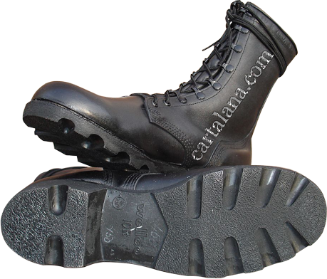 Ł American Military Boots (Mildew